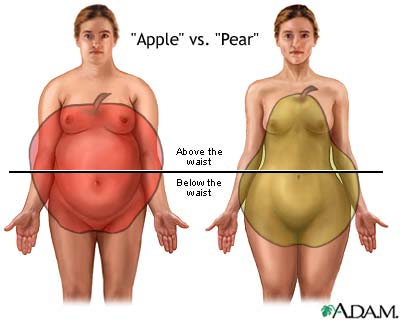 applepear21 The Science behind Spare Tires and Thunder Thighs