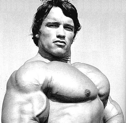 arnold chest 1,000,000,001 Different Ways to Train your Chest