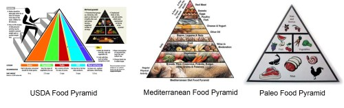 food pyramid America&#039;s &quot;Official&quot; Obesity Solution