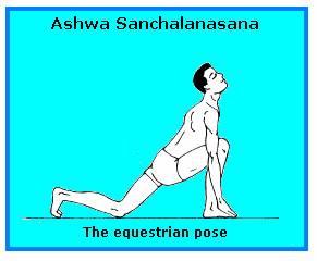 ASHWA SANCHALASANA