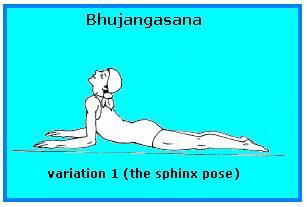 Bhujangasana Variation -1