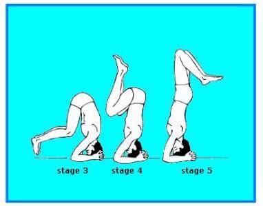 Sirshasana (the headstand pose)
