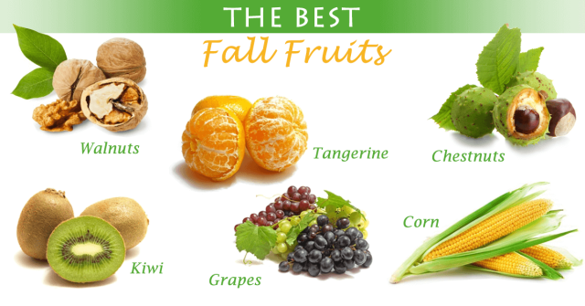 the_best_autumn_fruits