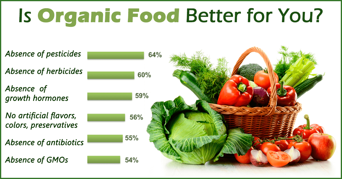 organic and inorganic food essay example