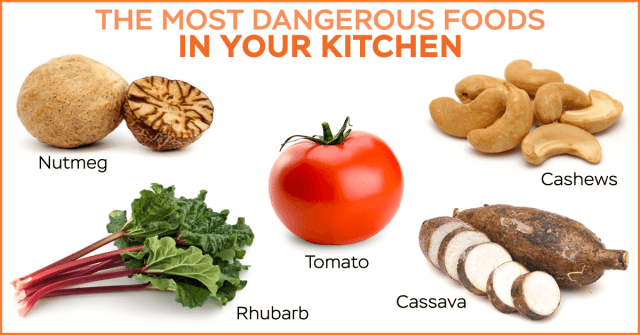 deadly foods in your kitchen