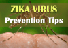 Zika virus symptoms and prevention