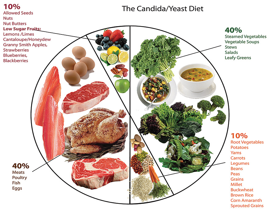 how to start candida diet