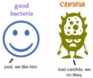 good-vs.-bad bacteria
