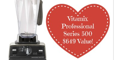 WINNER! Vitamix Professional Series 500 – $649 Value!
