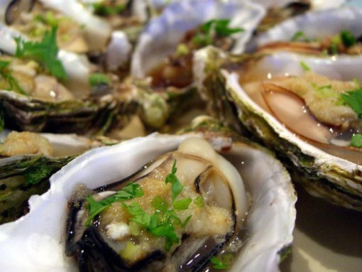 Oysters - Alpha