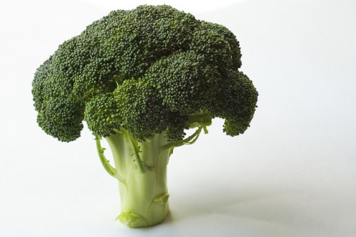 Brocolli - Matt Watson
