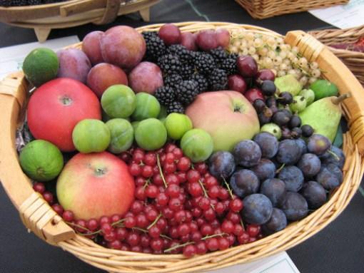 Fruit basket - Sarah Barker