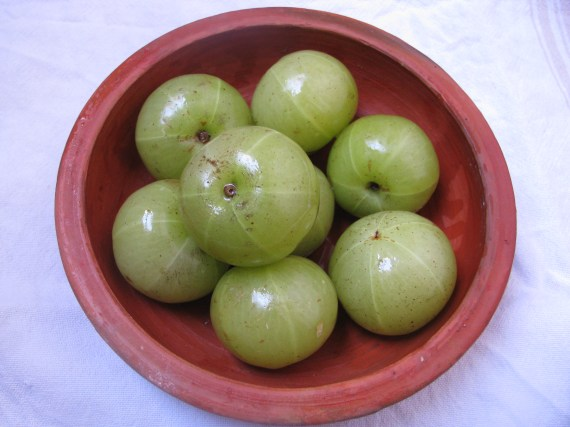 Amla | Indian Gooseberry