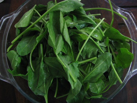 palak or spinach leaves