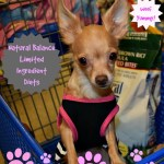 Keeping Our Dogs Healthy with #NaturalBalance L.I.D Limited Ingredient Diets® at #PetSmart