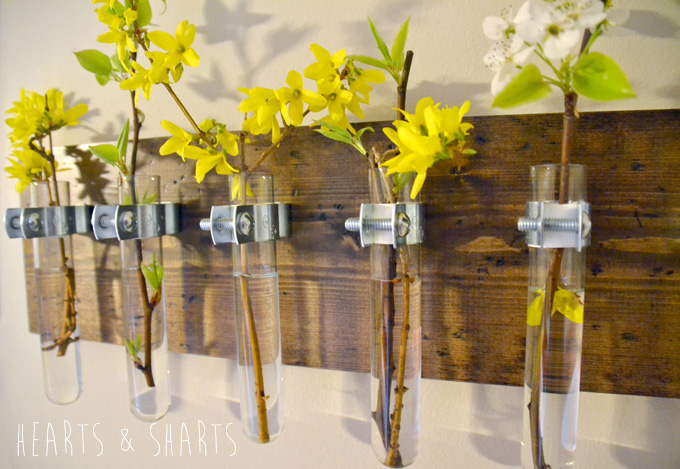 Hanging test tube wall planter 16