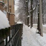 winter-road-side
