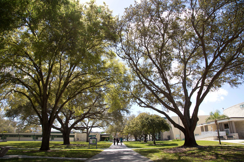 St. Petersburg College's Clearwater campus. (Photo: St. Petersburg College)