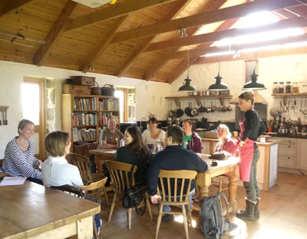 A Class at Fat Hen Wild Food Cookery School