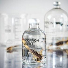 Vodka s škorpijonom