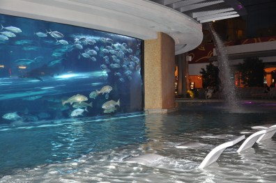 Golden Nugget Pool, Las Vegas