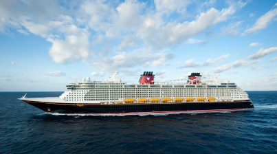 Križanka Disney Dream