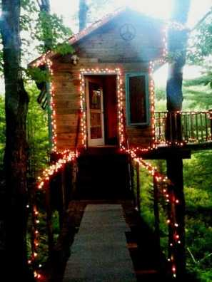 THE TINY FERN FOREST HOUSE, Vermont (ZDA)