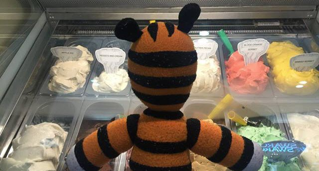hobbes tampa airport lost stuffed animal