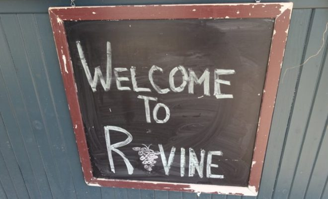 ravine-vineyard-welcome-wine-tasting-niagara