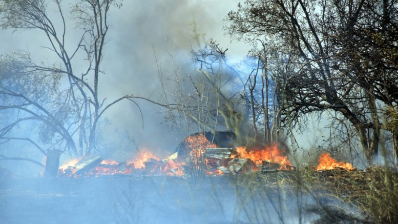 Σαράντα εννέα δασικές πυρκαγιές εκδηλώθηκαν σε όλη την Ελλάδα, το τελευταίο 24ωρο. ΑΠΕ-ΜΠΕ/ΜΠΟΥΓΙΩΤΗΣ ΕΥΑΓΓΕΛΟΣ