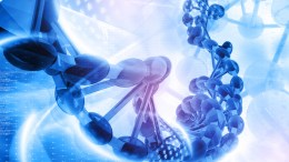Τα «γονίδια της εξυπνάδας» φαίνεται να βελτιώνουν την μετάδοση των σημάτων μεταξύ των νευρώνων σε διαφορετικές περιοχές του εγκεφάλου. Photo ΑΠΕ-ΜΠΕ