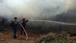 ΦΩΤΟΓΡΑΦΙΑ ΑΡΧΕΙΟΥ. Πυροσβέστες παλεύουν με τις φλόγες. ΑΠΕ-ΜΠΕ/ ΟΡΕΣΤΗΣ ΠΑΝΑΓΙΩΤΟΥ