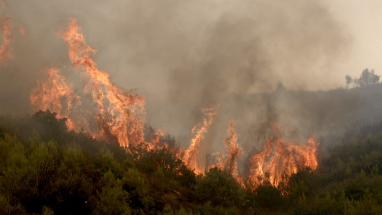 FILE PHOTO. Fire in Ryto, Corinthos. ΑΠΕ-ΜΠΕ/ΣΥΜΕΛΑ ΠΑΝΤΖΑΡΤΖΗ