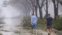 Men walk through toppled trees along Brickell Avenue after the full effects of Hurricane Irma struck in Miami, Florida, USA, 10 September 2017. Many areas are under mandatory evacuation orders as Irma Florida. EPA, ERIK S. LESSER
