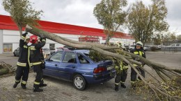 Firefighters remove a broken off branch of a tree from the damaded roof of a car after a heavy storm in a car park in Szentendre, some 20 kms north of Budapest, Hungary, 29 October 2017. The Hungarian National Meteorological Service has issued a warning for several counties due to the persistent wind gusts. EPA/Balazs Mohai HUNGARY OUT
