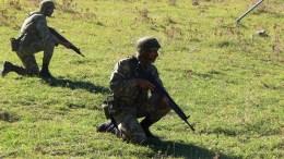 File Photo: Δυνάμεις του στρατού ξηράς σε διακλαδική άσκηση - Πηγή: Γενικό Επιτελείο Στρατού
