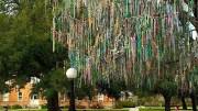 Ένα από αυτά που διατηρεί τον διάκοσμό του είναι το Χάντρινο Δέντρο στην πανεπιστημιούπολη του Tulane University. Photo @amna_news