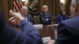 US President Donald J. Trump listens to remarks during a meeting with bipartisan Members of Congress in the Cabinet Room of the White House in Washington, DC, USA. EPA, SHAWN THEW