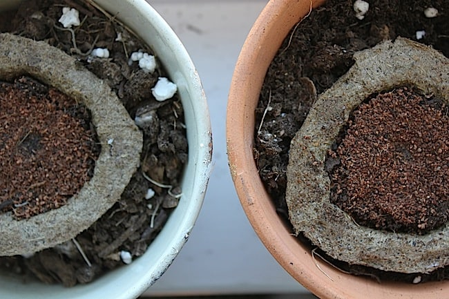 DIY Planters with Nail Polish | Hello Glow