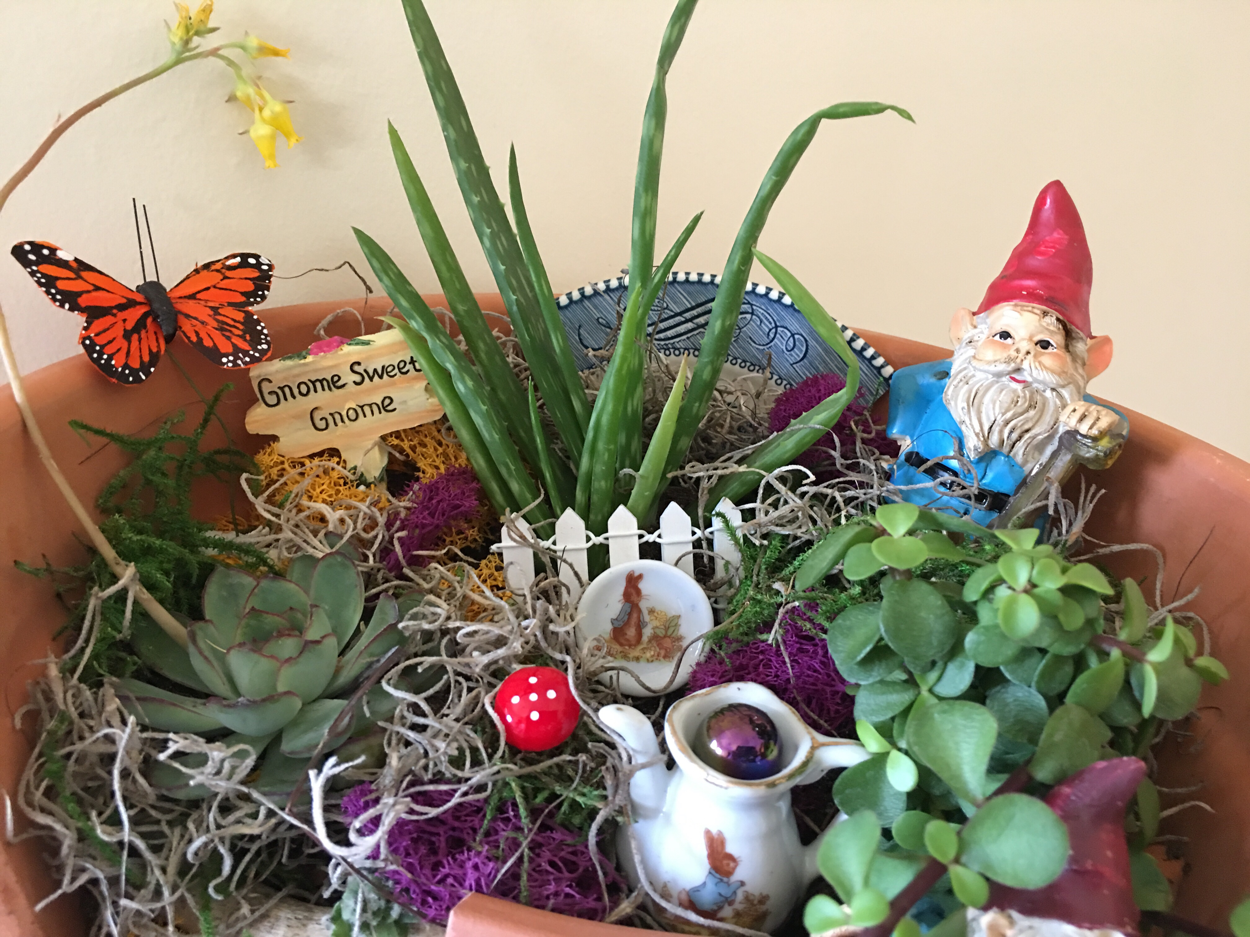 Preferential Central Indiana Had Such A Wintry Whyare We Still Getting I Even Bor Planting Pansies This Gnome Making A Magical Miniature Garden At Caravan Here garden Miniature Garden Gnomes