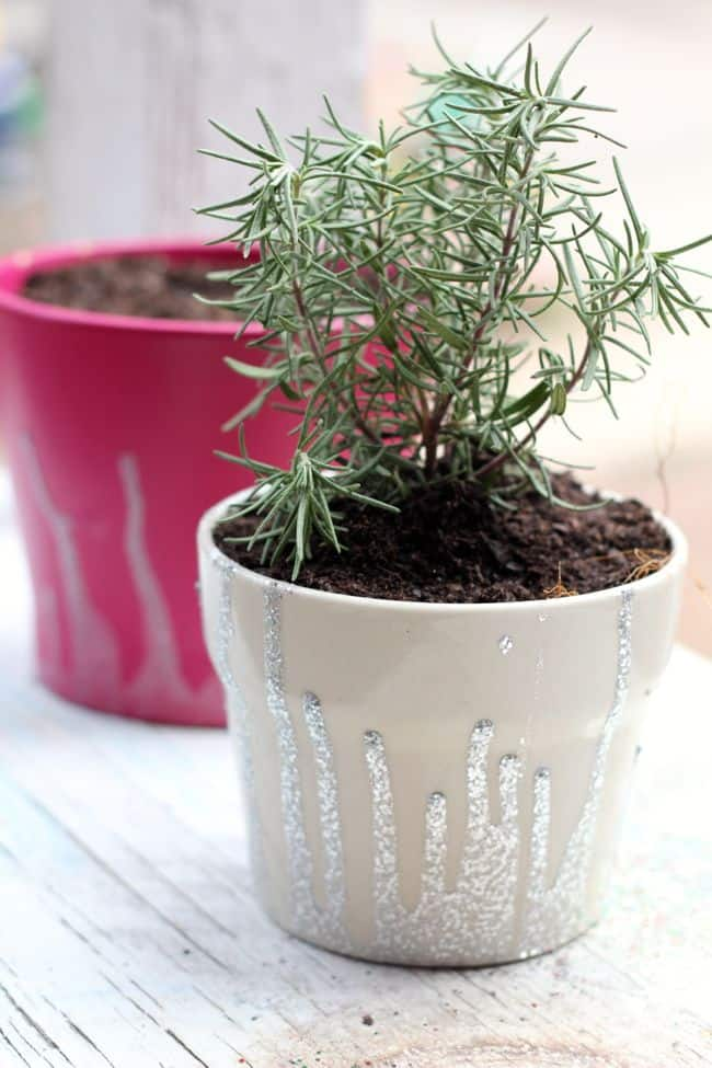 Dipped DIY Planters with Nail Polish | Henry Happened