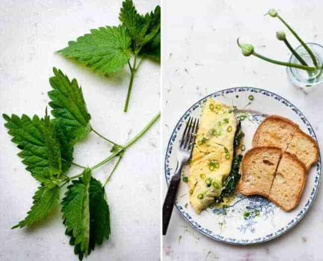 Spring Nettle Omelet Recipe