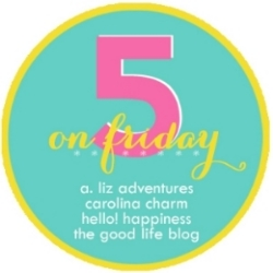 5 on friday link up / hello, rigby!