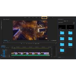 Small Crop Of Adobe Premiere Elements Vs Pro