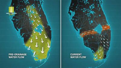 Everglades-Water-Flow
