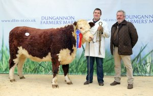 18 Oct 2016 - Nigel Heatrick, from Middletown, County Armagh, and judge John Gill, with Mr Heatrick's reserve champion, Blackwater Lady, at Tuesday's Hereford show and sale, Dungannon. Picture: Cliff Donaldson