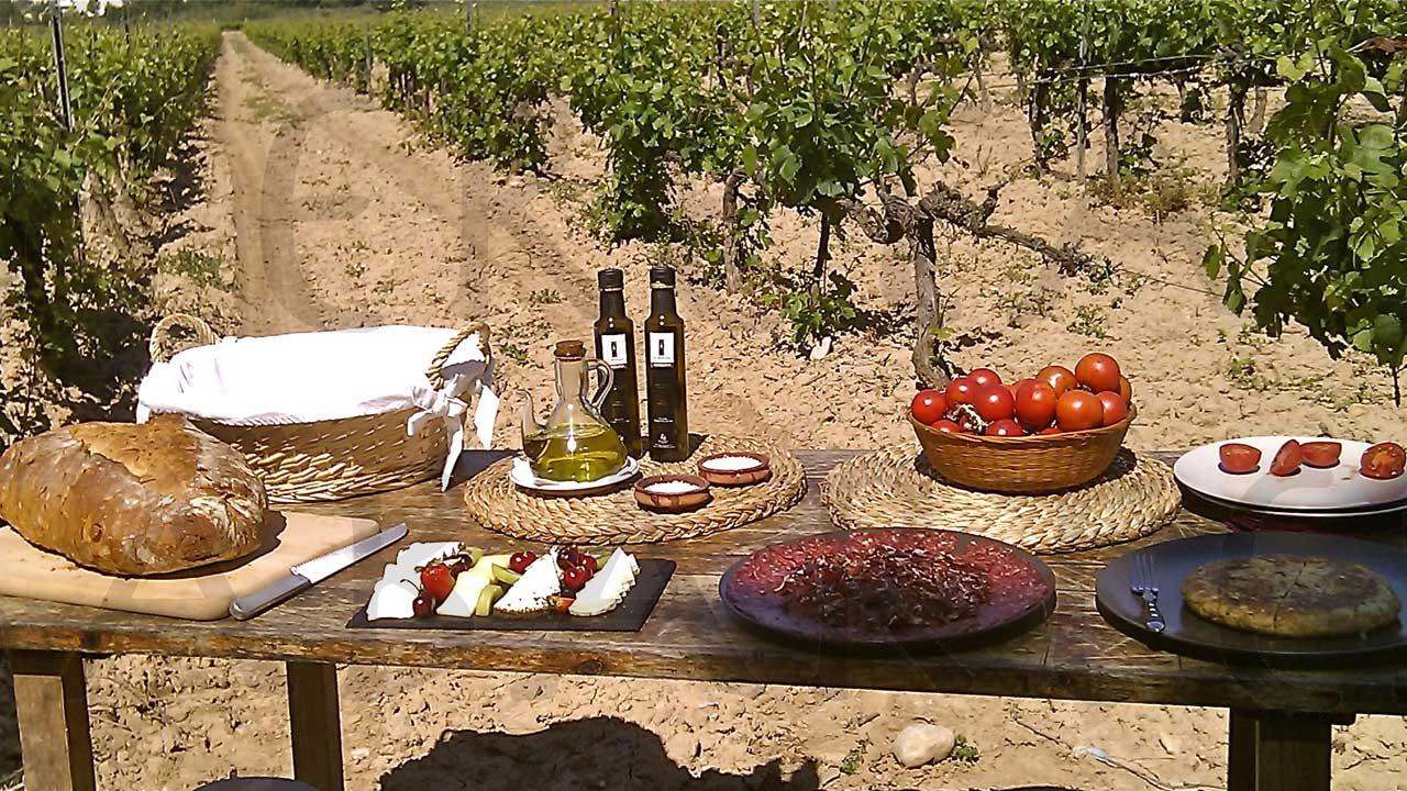 sumarroca-enoturismo-heretat-sabartes-vinos