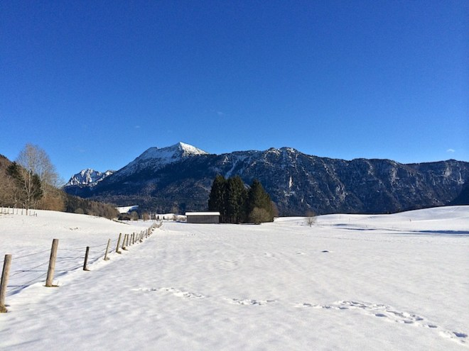 Inzell11