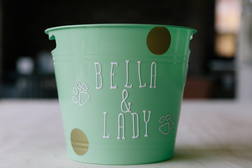 Meet Bella and Lady + DIY Personalized Dog Toy Storage