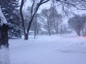snow11